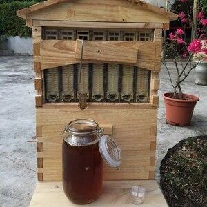 Деревянная коробка для пчеловода с 7 рамами для пчеловода, инструменты для пчеловода, самонивелирующийся медовый дом для пчеловодов, товары...