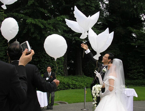 1pcs 104*54cm biodegradable Wedding Party decoration white dove balloon orbs peace bird balloon pigeons marriage helium balloon(China)