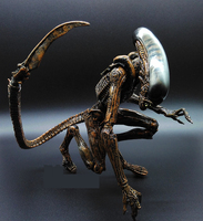 1pc 23cm Alien vs Predator ABS Action Figure Model Collectie kids toys MOVIE Film Brinquedos opp BAG Scar Predator QUEEN