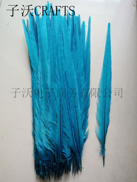 50 Pieces Of High Quality Blue Pheasant Tail Feathers 45 50cm Diy