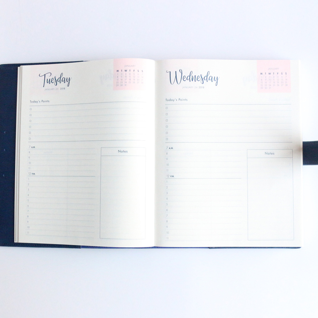 picture relating to Day Organizer called university 12 months working day planner -