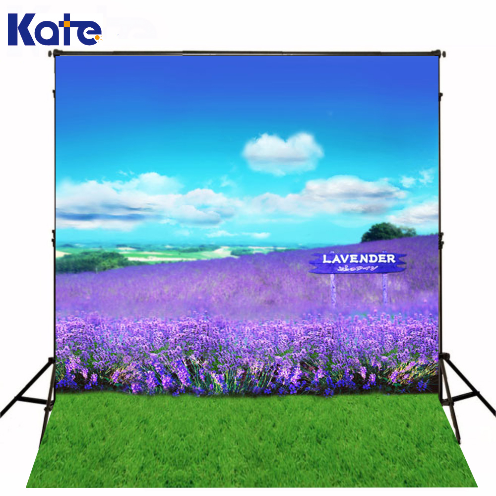 10*6.5feet(300*200CM) Photography Backdrops Lavender blue sky chroma key Free Shipping 10 6 5feet 300 200cm photography backdrops vast blue sky and white clouds sofa free shipping