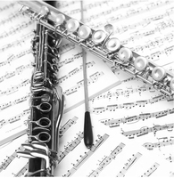 Western Concert Flute Silver Plated 16 Holes C Key Cupronickel Musical Instrument with Cleaning Cloth Stick Gloves Open Hole
