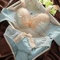Japonês marca de Luxo do vintage sexy bordado cueca lingerie reunir sutiã de renda definido mulheres Íntimos sutiã e calcinha