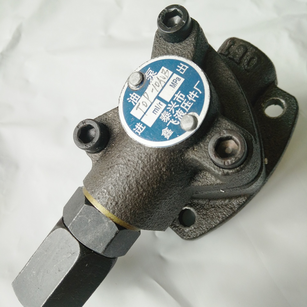 Gear oil pump Insert type lubricating cycloid small flow low pressure gear pump Triangle trochoid adjustable iron cast body