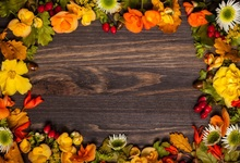 Laeacco Old Wooden Board Autumn Yellow Leaves Flowers Photography Backgrounds Customized Photographic Backdrops For Photo Studio