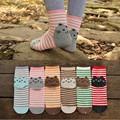 Korean Cat Style Cartoon Animal Socks Funny Women Cotton Sock Skarpetki Damskie Meias Coloridas 12 Pairs Striped Character Socks