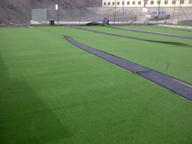 Cricket Artificial Turf Mat