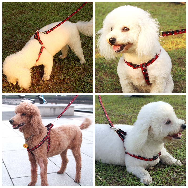 MySudui Christmas Pet Dog Harness Leash Set Cotton Small Dog Harness And Leash Set Pet Cat Vest Harness Coleira Correa Perro (6)
