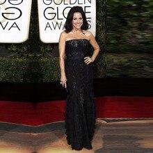 Golden Global Academy Awards 2016 Oscar Straight Lace Red Carpet font b Dresses b font Elegant