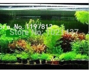 ¡Promoción! 1500 piezas. 15 tipos de tanque de peces de acuario hierba agua planta acuática Diy envío gratis decoración de Bonsai de interior jardín DIY