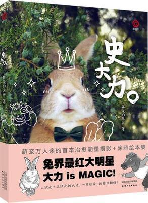 Chinese Lovely Animal Rabbit Shi Da Li Photo Album Book