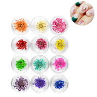 12 Different Colors Manicure Dried Flower Nail Art Decorations Nail Jewelry Natural Dry Flowers Health Beautiful