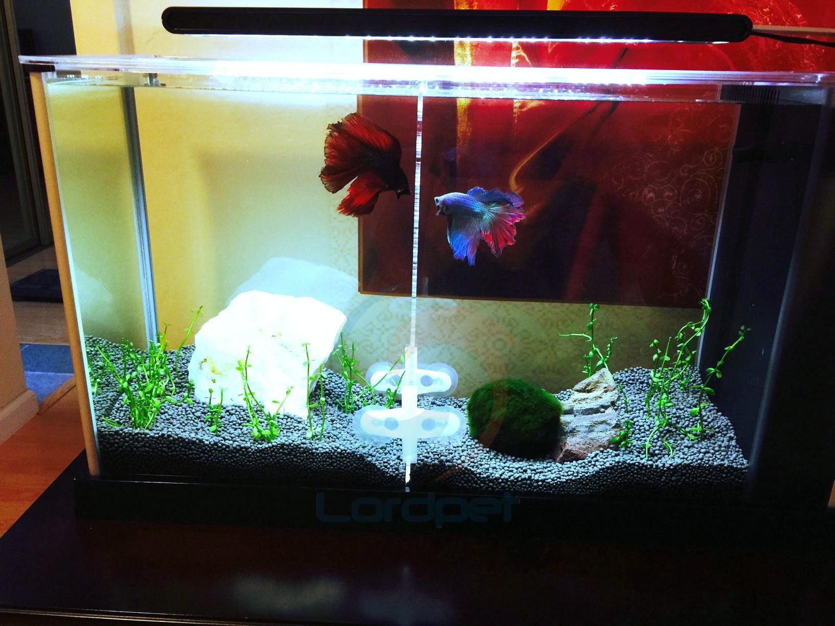 "Aquarium Clear Acrylic Divider 0 24"" Holes 0 12"" Thick 4pcs Suction"