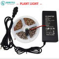 5M LED Grow Flexible Strip Light  3 Red 1 Blue Aquarium Led Lighting+Power Supply Flower lamp for Greenhouse