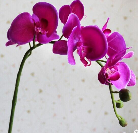 10ks Moth Orchidej květina motýl orchidej umělá květina pro domácí a zahradní svatební dekorace doprava zdarma