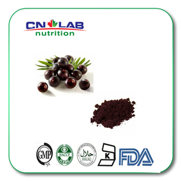 1kg/lot 20:1 acai berry powder from GMP factory high quality acai berry extract powder 1kg lot gmp factory supply chokeberry plant extract powder supplement