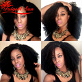 afro kinky curly wig natural looking african american wigs front lace wig human hair Swiss lace 130% density