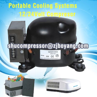 Walk-In cooler/Freezer condenser and evaporator systems with 12v 24v solar refrigetor fridge freezer compressor prasanta kumar hota and anil kumar singh synthetic photoresponsive systems