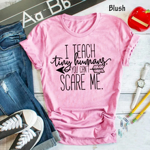 Skuggnas I teach You cant scare me t-shirt teacher gift grunge tumblr camiseta rosa feminina tees women fashion goth t shirt