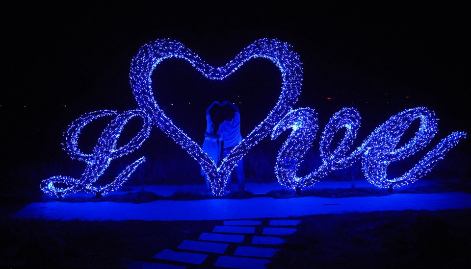 Lighting Strings wedding christmas lights led strings 10m AC220V 110V Led Strip Light Garden Garland (15)