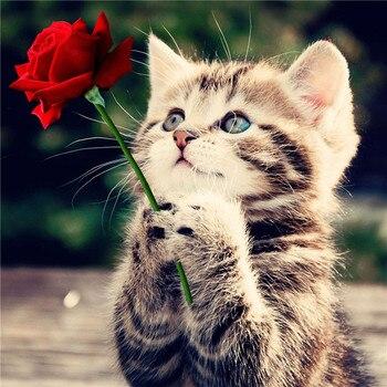 Рукоделие красная роза и кошка 5D алмазная вышивка животные квадратные узоры Стразы холст вышивка крестиком искусство домашний декор