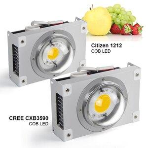 Image 2 - 크리 어 CXB3590 COB LED 성장 빛 전체 스펙트럼 200W 300W 시민 LED 식물 실내 텐트 온실에 대 한 램프를 성장 수경 식물