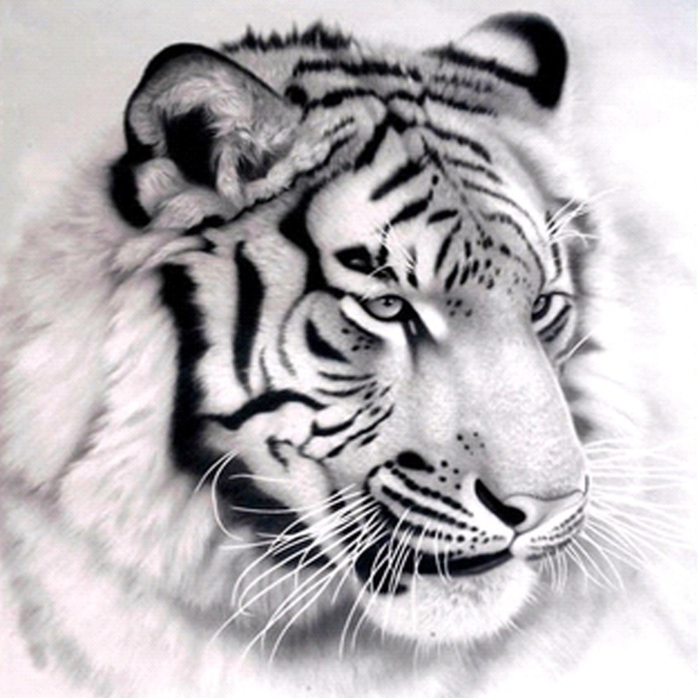 Us 22 39 plain black and white tiger embroidered pencil trace all drilling masonry painting decorative art crafts elegant room 30x30cm di berlian