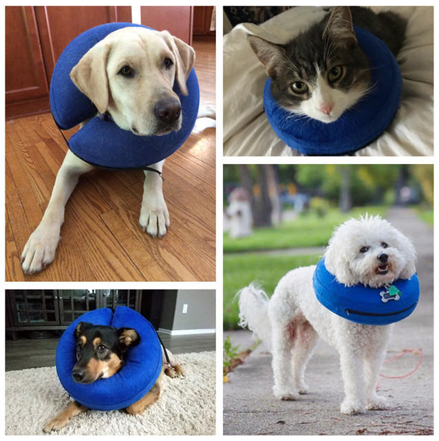 Inflatable Pet Collar and Neck Protector 4