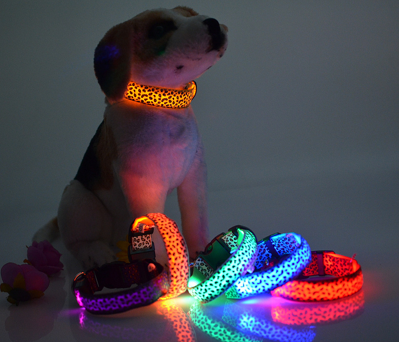 Pet Supplies Pet Dog Cat Night Collar di sicurezza Lampeggiante Glow Light Up Leopard Collari a LED in nylon S M L XL 8 colori Scegli.