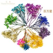 f52dccf2e8 Toptan Satış yunnan dried flower Galerisi - Düşük Fiyattan satın ...