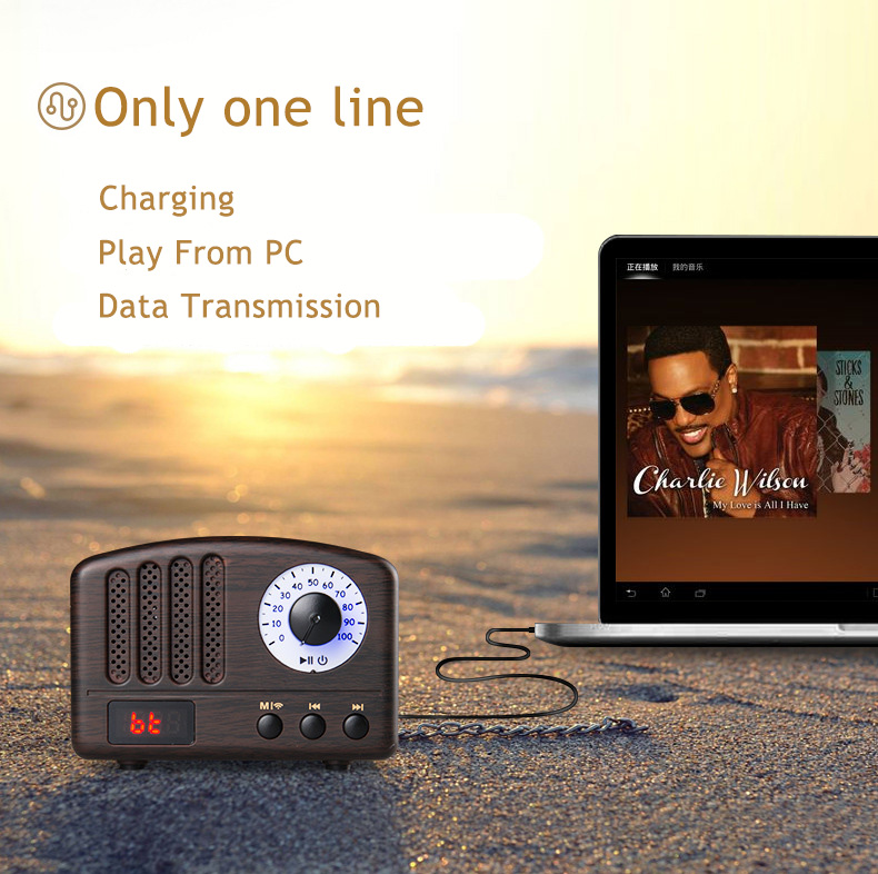 Wireless Bluetooth Retro Speaker Rechargeable Portable Wireless Music Soundbar TF USB Flash Disk AUX FM Radio Bluetooth Speake (6)