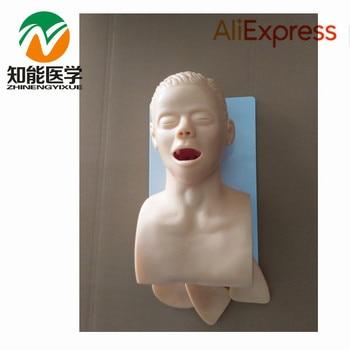 BIX-J5S Airway Lntubation Manikin (Teeth Compression Alarm Device), Trachea Cannula Model WBW003