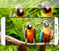 Закаленное Стекло Для Пусть V LeEco Le 1X600 Le 1 Про X800 Le 2 X620 Le 2 Pro Le Макс X900 Le 1 S X500 Pro3 Cool1 Протектор Экрана фильм