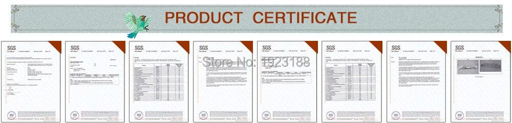 cross stitch Certification.jpg