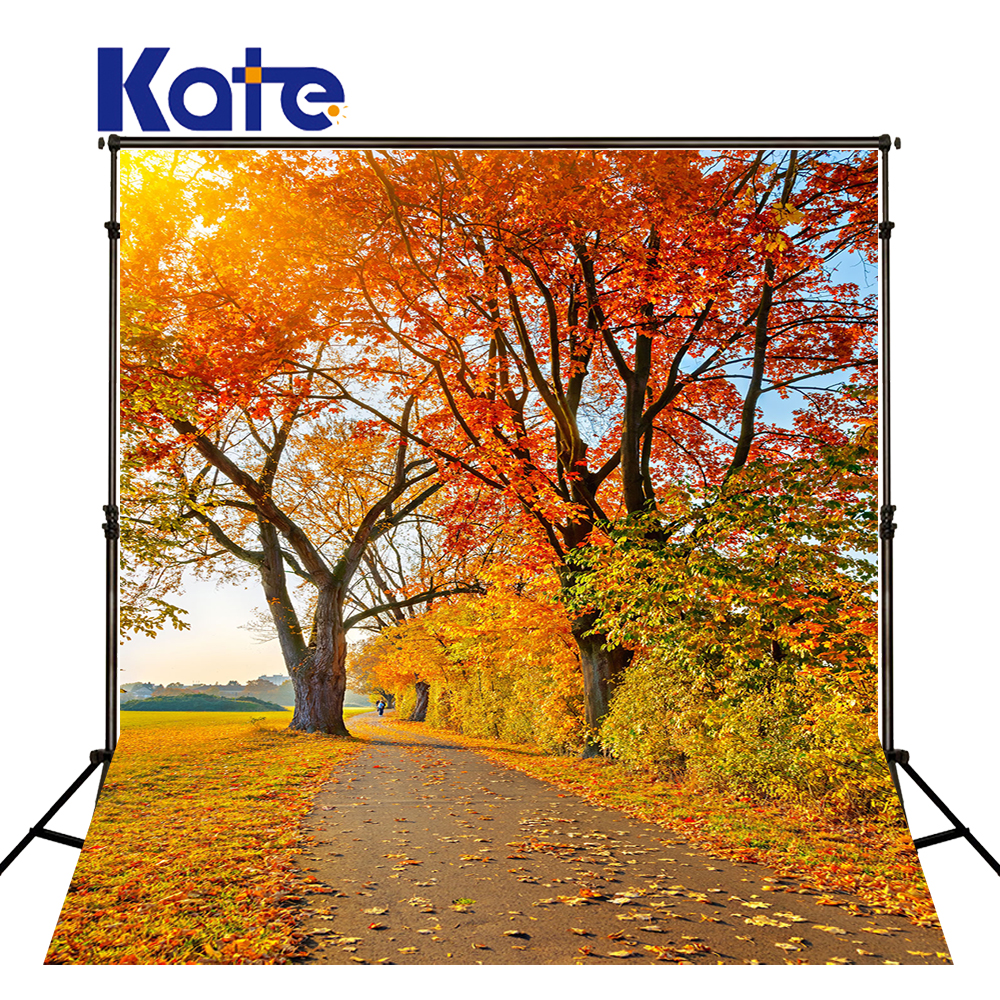 Kate Golden Fall Custom Photography Backdrops Scenic Photography Background Fondos Fotografia Washable Backdrops For Photography simple wave photography backdrops 3x5ft newborn boy birthday photography background custom made fotografia