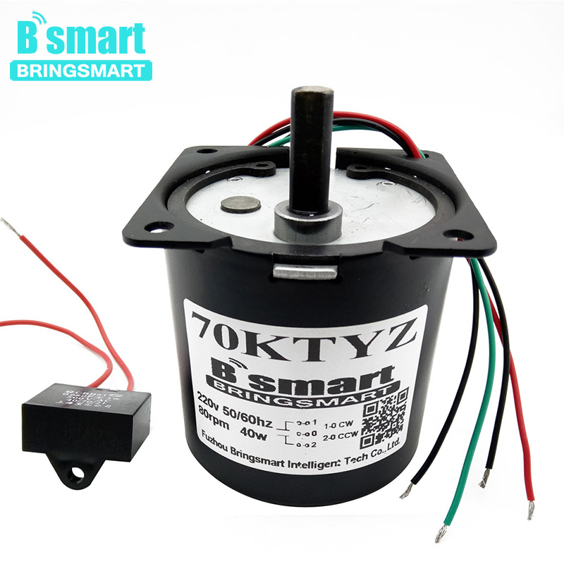 Bringsmart 160kg.cm AC Synchronous Motor 220V High Torque Mini Gear Reduction Motor 40W Permanent Magnet AC Gear Motor Low Speed