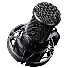 TAKSTAR PC-K220 Professional Studio Condenser Microphone Side-address Microphone Computer Mic for Webcast Network Recording