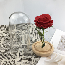 Medium Beauty and the Beast rose, Rose in glass dome, forever red preserved Belle special romantic gift