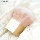 RANCAI 1pcs Blusher ...