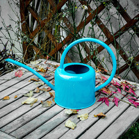 Presente criativo Do Vintage Saudade fornecedor Jardim ferramentas de metal de ferro garrafa de Rega Pode Delgado boca flores tanque de estanho decoração