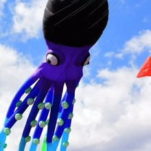 Летающий большой осьминог papalotes pulpo рыбный флаг Радуга воздушный змей livre мягкий воздушный змей взрослый гигантский воздушный змей большой Рипстоп нейлон cometas grandes