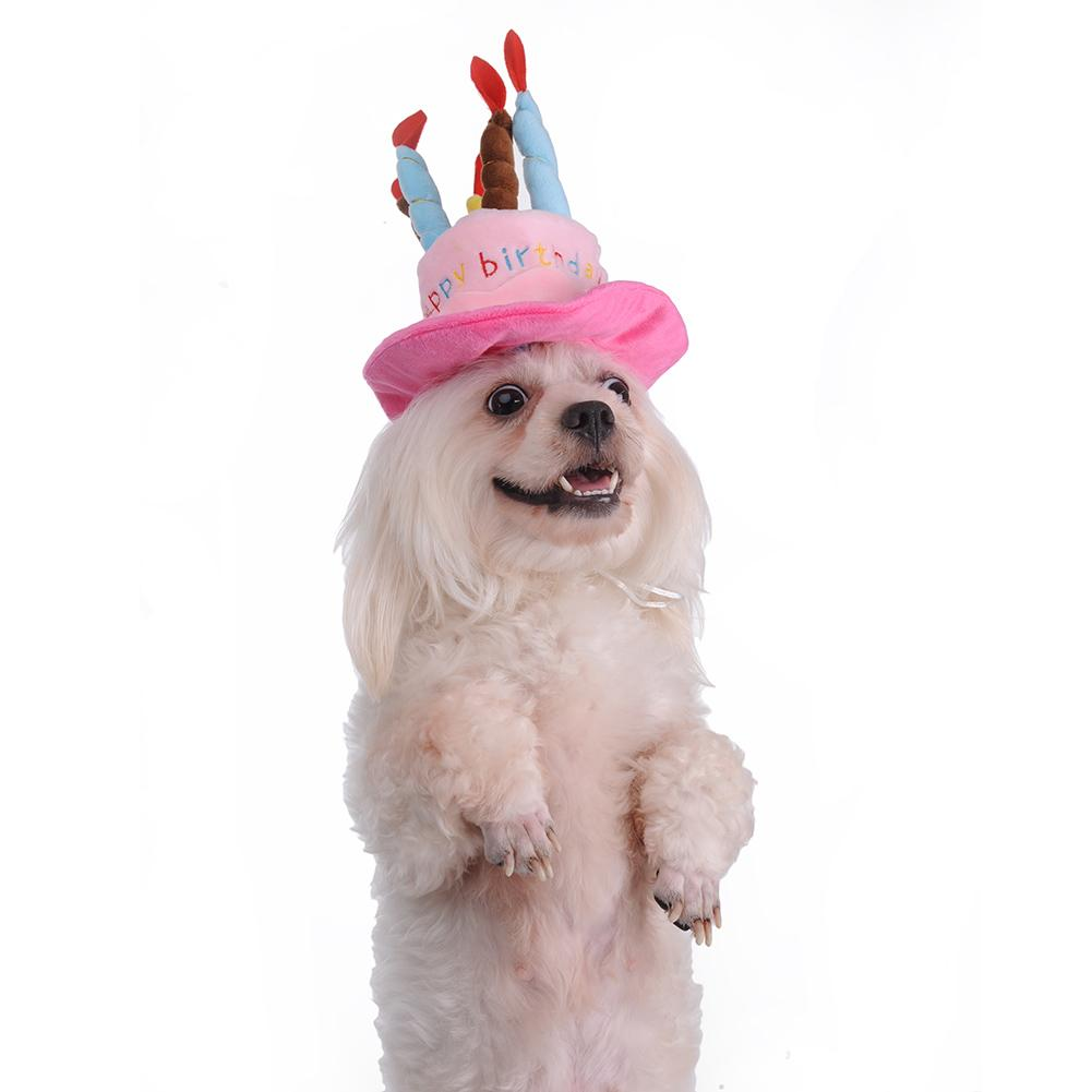 1 X Pet Dog Birthday Hat Lovely Pink Blue Cake Shape With Candle Pets Cloth Puppy Cats Has Adjust Strap In Cat Clothing From Home Garden On