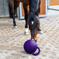 2Pcs Equine Rubber Jolly Ball Horse Pony Play Toy Stable Field Toy with Handle