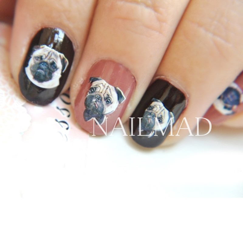 Image 3 - 22pcs Cartoon Cats Nail Water Decals Boxer Dogs Nail Art Tattoo Decals Kitten Water Slide Nail Stickers Manicure Decoration-in Stickers & Decals from Beauty & Health