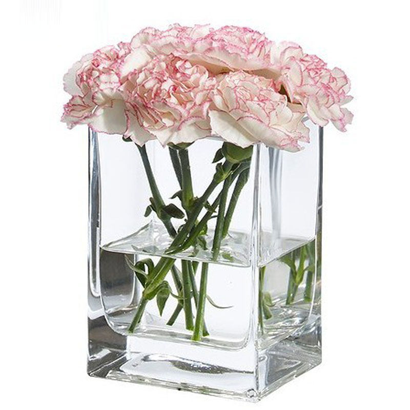 Desktop Display Clear Glass Vase Small Mouth Square Vase Fishbowl