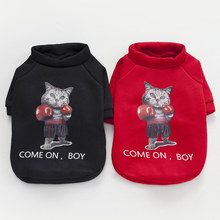 "Cute ""Come On, Boy"" Sphynx Cat Hoodie / Sweater"