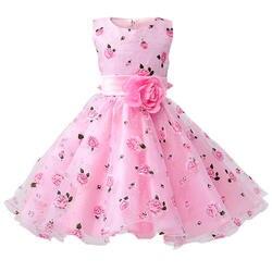 Розничная продажа маленьких для девочек в цветочек платья с Тюль с изображением розы принцесса платья Элегантный вечернее платье для