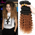 Tissage Bresilienne Ombre Malaysian Deep Wave Virgin Hair Extension 3pcs Two Tone Human Hair Weave T1b/30 Blonde Malaysian Hair