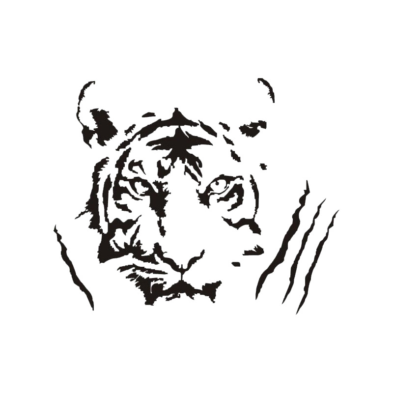 A4 Tiger Face STENCIL Paints Walls Fabrics Furniture Home Decor Art Craft Reuse
